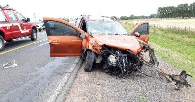 VIDEO Cuatro personas fallecieron en una colisión en Ruta 205